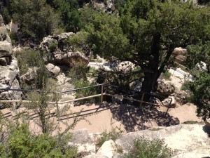 walnut_canyon01